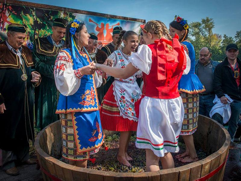 Фестиваль «Дружби без кордонів» – «BEREG FEST»