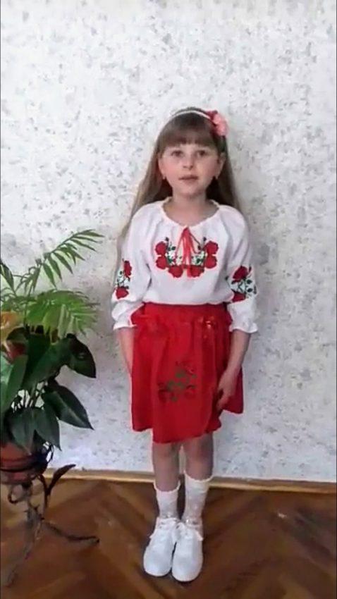 irlyavskyi2020_9