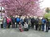 Митці Закарпаття малювали на вулицях квітневого Ужгорода в рамках традиційного семінару-пленеру